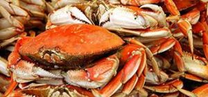 Tuesday Nights is Dungeness Crab Dinner Night $31.99